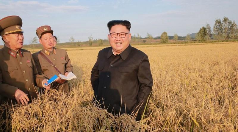 Kim Dzong Un wypowiada wojnę upałom. Umierają ludzie