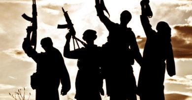 Wioletta Ostapkiewicz: Największe organizacje terrorystyczne w Afryce