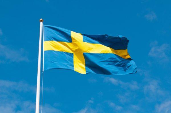 Nacjonalistyczna partia startuje w wyborach w Szwecji