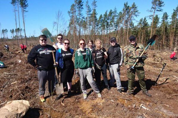 Wszechpolacy zasadzili las dla Niepodległej