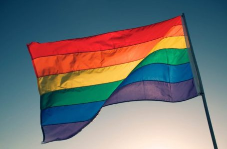 """Zalando będzie walczyło z """"homofobią"""" wykorzystując uszkodzone ubrania osób związanych z LGBT"""
