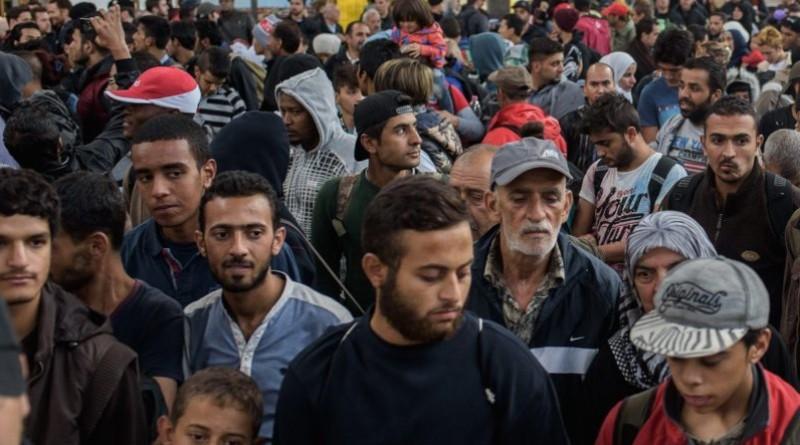 AfD domaga się badania wieku imigrantów