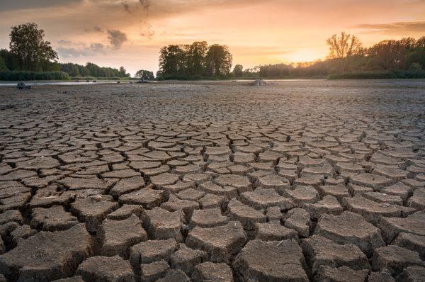 Klaudiusz Hydrolog: Sposoby przeciwdziałania suszy